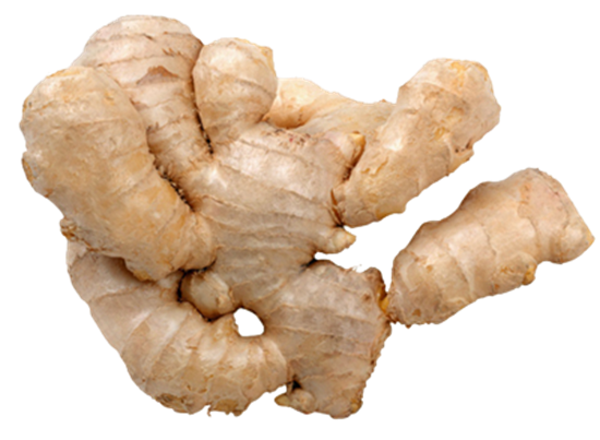 Ginger is Good: Health and dietary tips