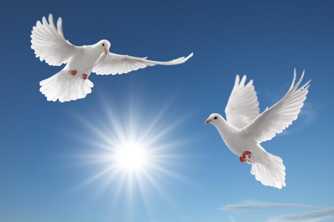 Come Holy Spirit,Come