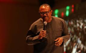 Politics not a career, but service vocation – Obi