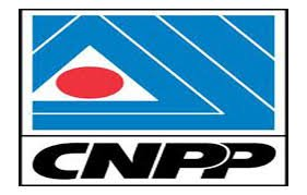 To Arrest Anti-Fuel, Electricity Tariffs hike Protesters is insensitive, draconian —CNPP