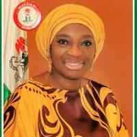 ANAMBRA ELECTION:Sen Ekwunife would Cause Chaos in PDP and Defect, Group Warns